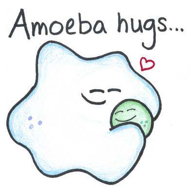 Amoebahugs1